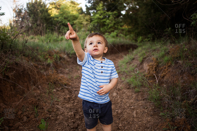 Little boy pointing up on a trail in a forest