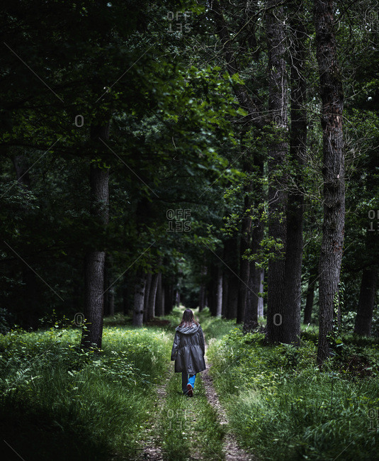 Rear view of woman walking on a trail in forest