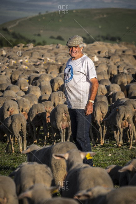 Soria, Spain - June 9, 2017: Shepherd on the transhumance route in the Soria region of Spain
