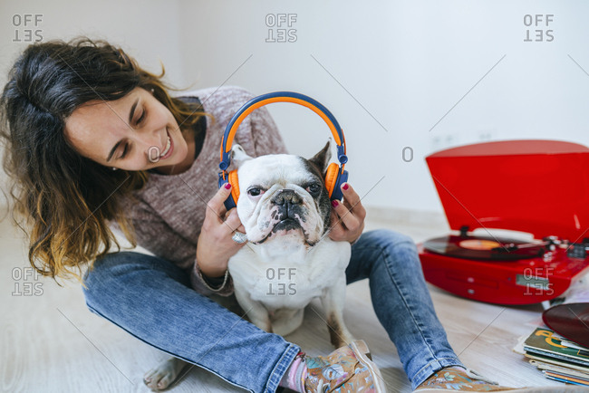 Woman puts headphones on her French Bulldog to listen to record playing on turntable