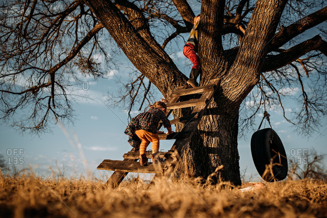 Two young kids climbing ladder to get up into tree
