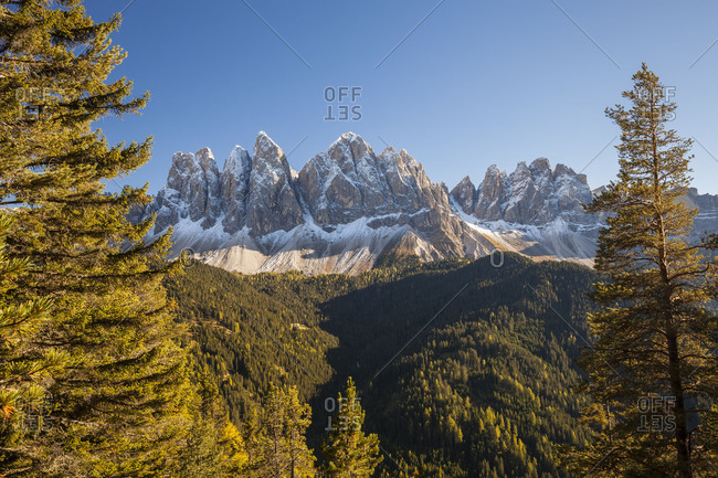 The gruppo delle Odle (mountain) (3025 m) in the fall, Puez-Geisler Nature Park, Dolomites, Val di Funes, Italy, Europe