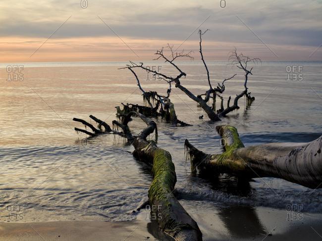Germany, Mecklenburg-Western Pomerania, Western Pomerania Lagoon Area National Park, disrooted houses on West beach of Darss, evening mood, sky