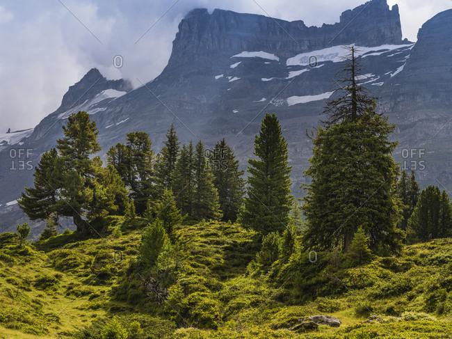 Alpine landscape on the Engstlenalp