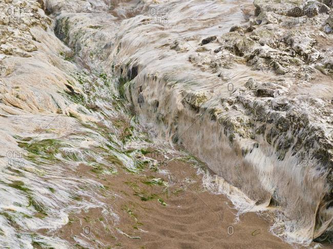 Northern Ireland, Antrim, Causeway Coast, mussel limestone with algae in the sandy beach