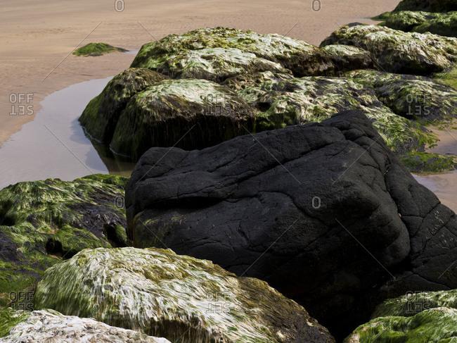 Northern Ireland, Antrim, Causeway Coast, mussel limestone with green algae and dark basalt stone in the sandy beach