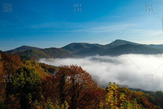 Autumn magic in the Siebengebirge (hill range of the German Central Uplands), coloured autumn forests and fog bank in the valley