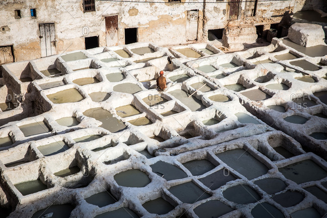 March 24, 2018: Tannery in Fez