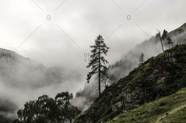 Mist in the Seidlwinkltal in Rauris, Hohe Tauern