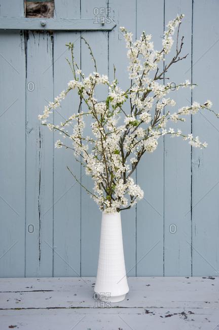 Flower vase, first spring flowers