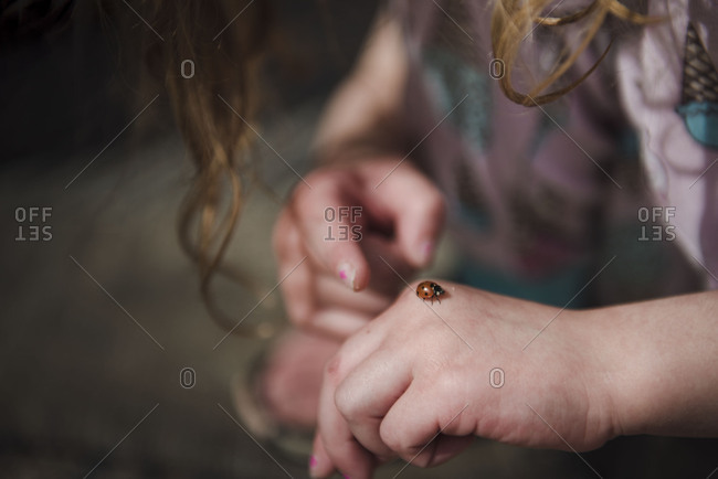 Close-up of ladybug resting on small girl's hand
