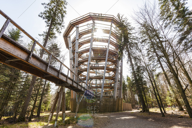 Black Forest, Bad Wildbad, Germany - April 15, 2018: Canopy Walk Black Forest against the sun