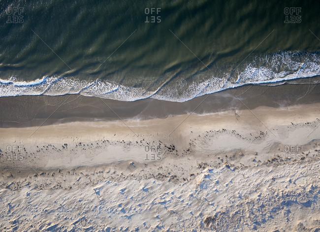 USA- Virginia- Aerial view of Virginia Coast Reserve- Atlantic Ocean- beach
