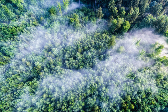 Germany- Baden-Wuerttemberg- Swabian Alb- Aerial view of Schurwald- morning fog