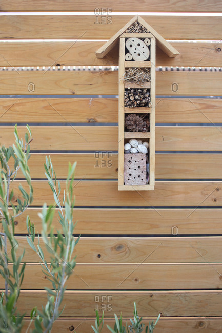 Detail of wooden shelves hung on fence in backyard