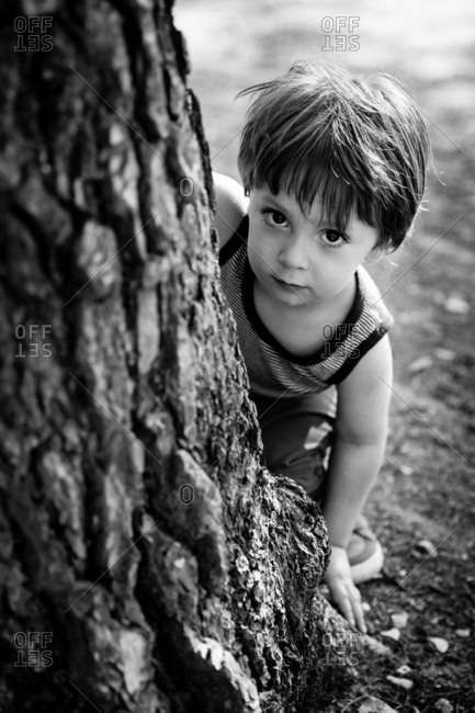 Young boy looking out from behind tree