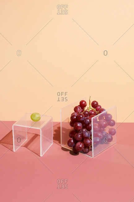 One grape beside a bunch of grapes