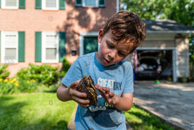 Young boy holding pet eastern box turtle by shell and stroking its belly outside home