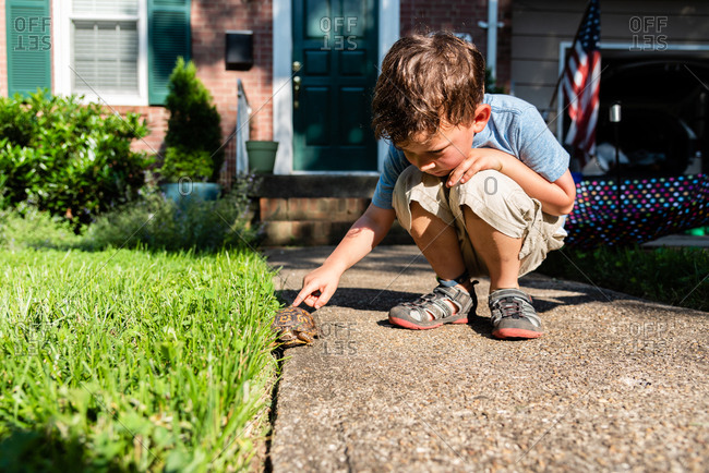 Young boy touching pet eastern box turtle roaming outside house on sunny day