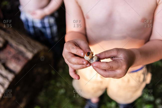Close up of young boys hands holding insect larva that he found in backyard