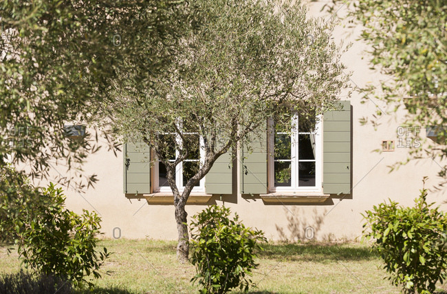 Exterior of house and yard with trees in the south of France