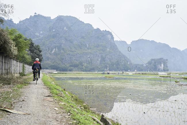 Cyclist female traveler riding through rice fields in Tam Coc, Vietnam.