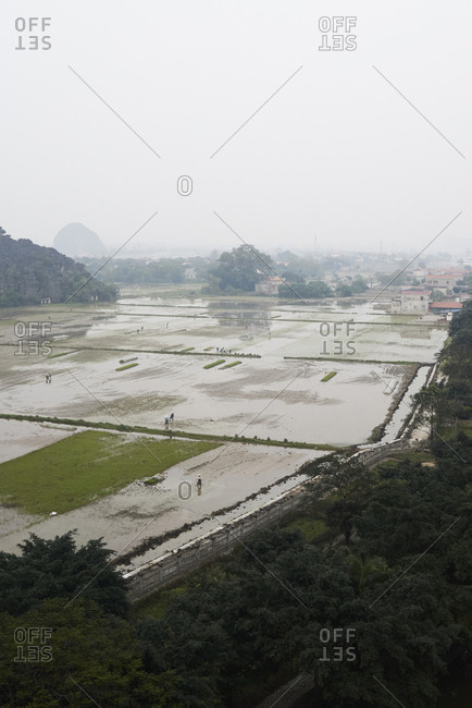 Landscape view of rice fields from Hang Mua viewpoint in cloudy day at Tam Coc, Vietnam.