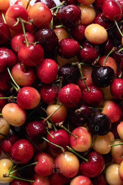 Fresh Sweet and Rainier Cherries
