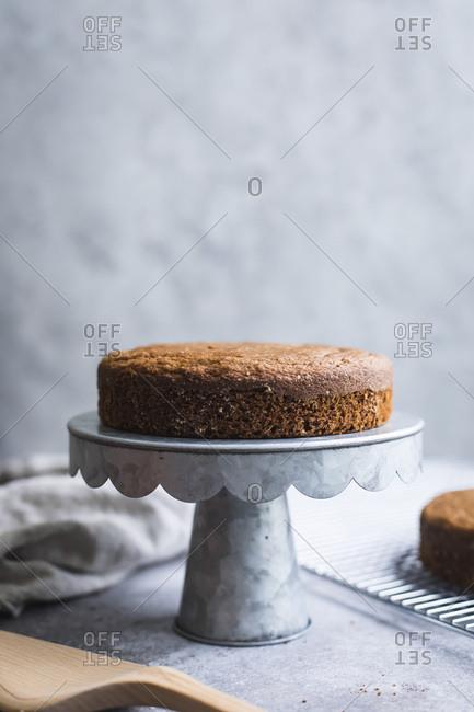 A sponge cake
