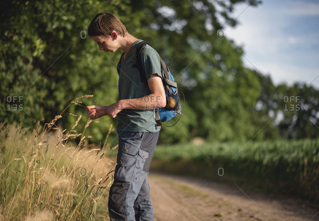 Young man with backpack admiring field of tall grass