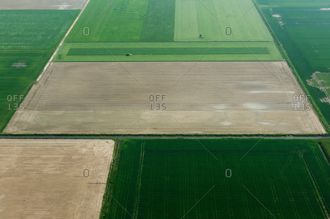 Fields and country roads in spring, Stroodorp, Zeeland, Netherlands