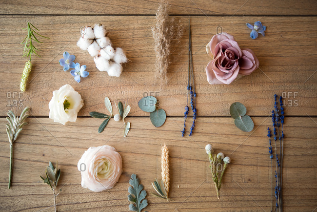 Still life of pastel colored flower heads, flower stems and leaves on wood, overhead view