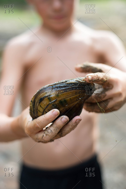 Boy holding a clam