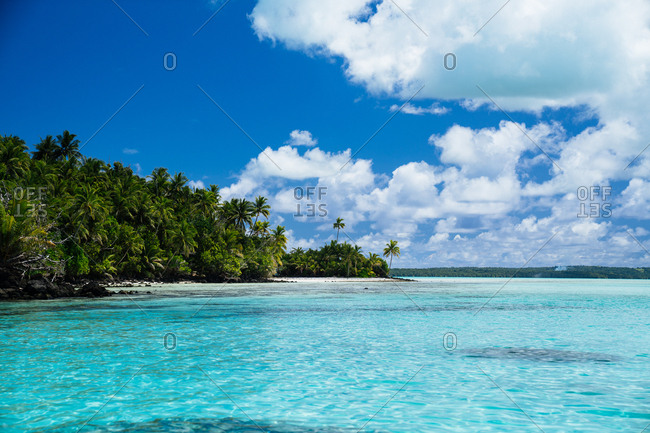 Scenic view palm trees on the coast of Aitutaki, Cook Islands