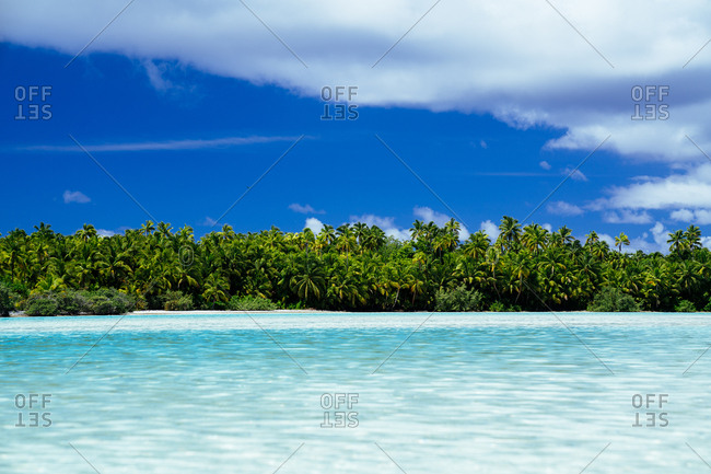 The coast of Aitutaki, Cook Islands covered in palm trees