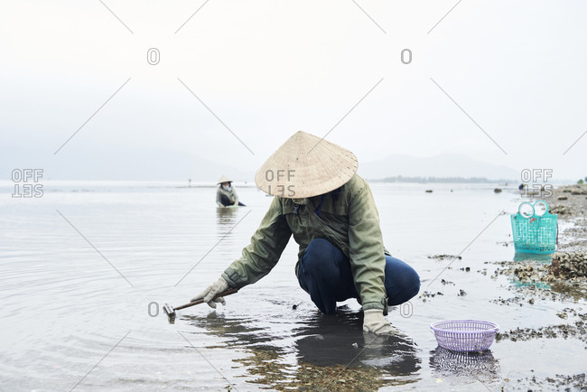 Unrecognizable women working fishing clamshells in lake with hat and basket