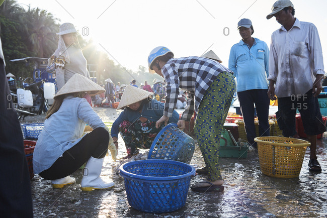 Mui Ne, Vietnam - January 7, 2018: Fishers and wholesale buyers discussing pricing and quantity of seafood and fish catch at seashore