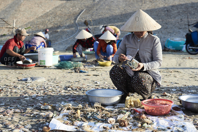 Mui Ne, Vietnam - January 7, 2018: Woman at work counting money after selling seafood at clandestine fishing market