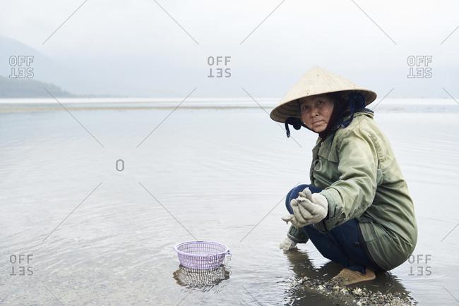 Hue, Vietnam - January 23, 2018: Senior vietnamese woman at work picking clamshells in huge lake showing catch at camera