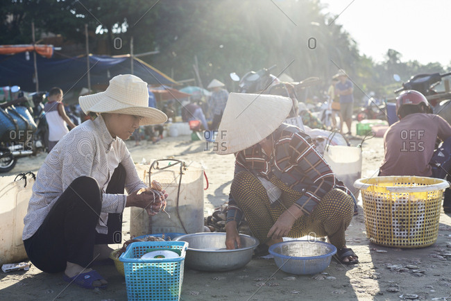 Mui Ne, Vietnam - January 7, 2018: Women at work cleaning and selecting seafood from fishermen at seashore