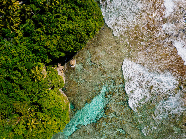 Drone view of tide approaching lush tropic beach trees