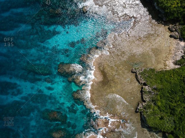 Drone view of tropical shoreline with lush plants