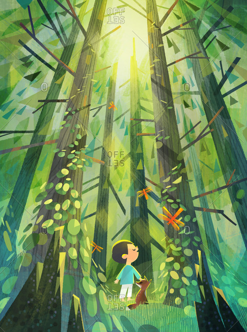 Child and fox standing in the sunlight coming through the tall trees in a forest grove