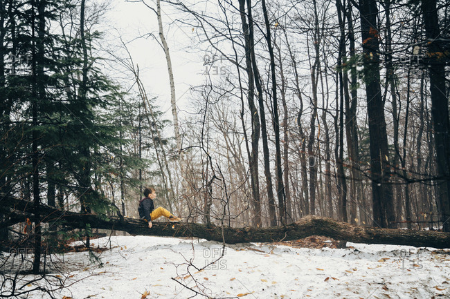 Side view of boy sitting on fallen tree in forest during winter