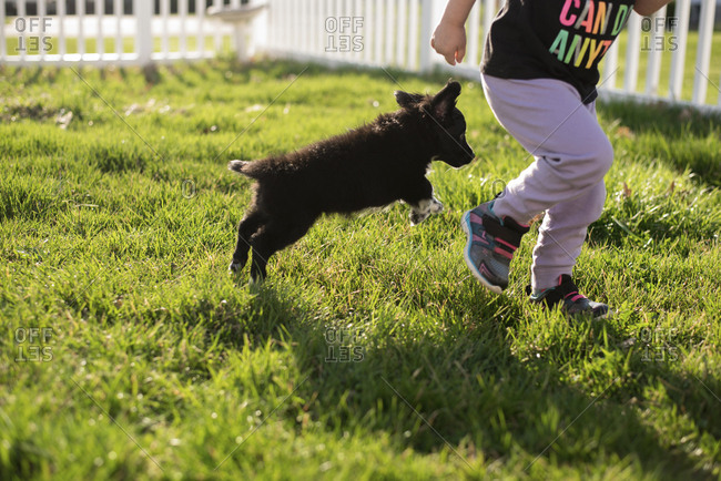 Low section of girl with puppy running on grassy field at park