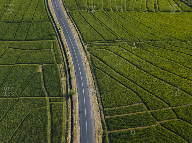 High angle view of empty road amidst agricultural field