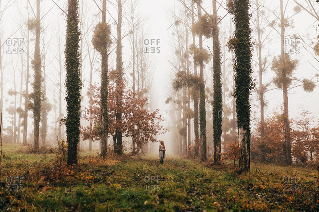 Woman standing in misty autumn forest