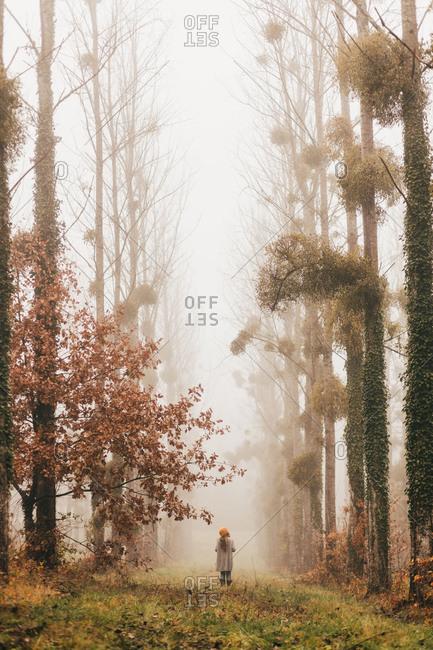 Pretty woman in foggy forest