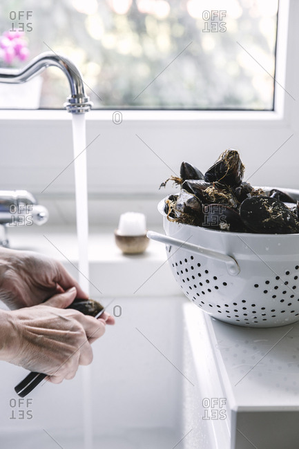 Crop hand opening mussels