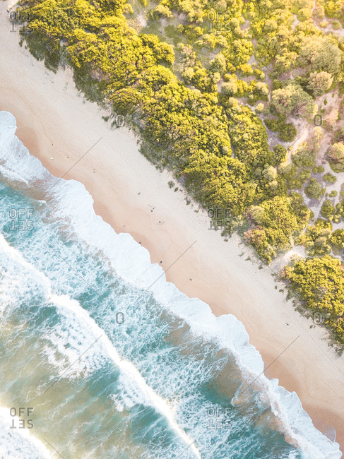 Aerial capture of Dee Why Beach in Sydney